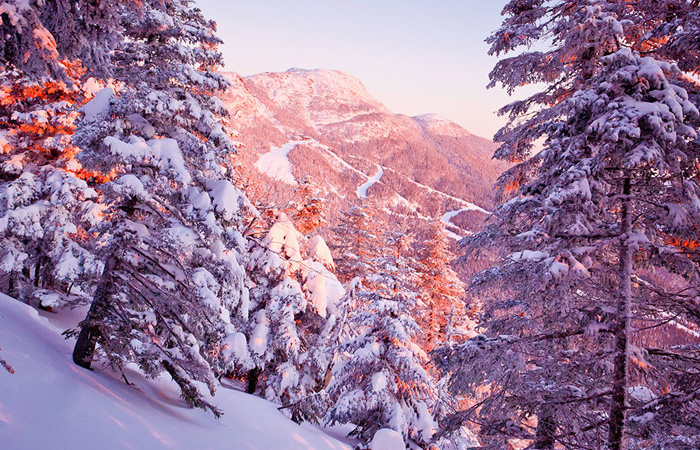 The Best Mountains in the Northeast for Snowboarders